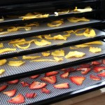How Does A Food Dehydrator Work?