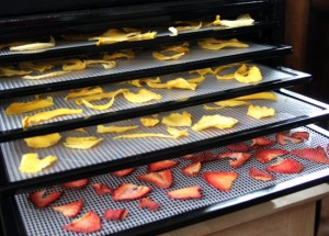 dehydrator 300x215 What To Seek When Getting A Food Dehydrator